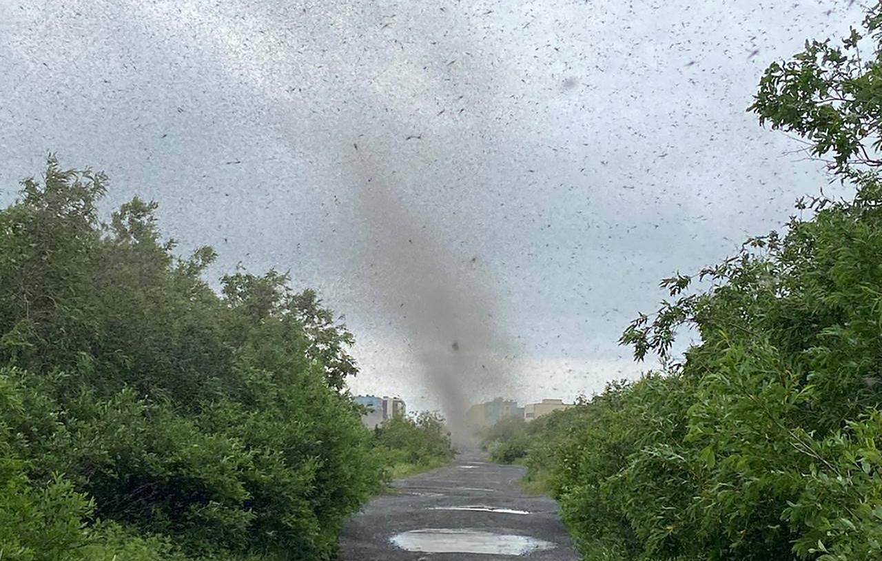 tornado di zanzare
